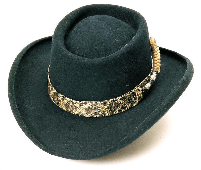hi roller hat